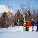 ニセコヴィレッジでスキーを楽しむ人々