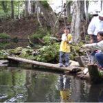 Fishing pond at Niseko Fine
